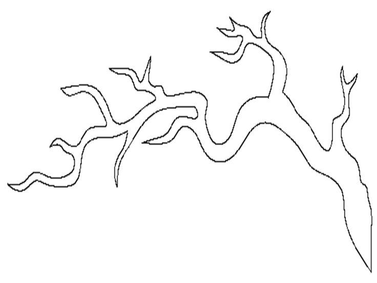Διαφάνεια8.PNG (960×720)
