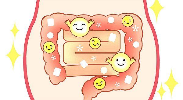 ■ 人はなぜストレスに苦しめられるのか!? 幸せホルモンの一つである「セロトニン」は、心と体を安定させるために欠かすことが出来ない神経伝達物質です。セロトニンが不足すると、うつ病などの精神疾患を誘発することになるわけですが、実はセロトニンが不足している人が増えています。 意外に思われるかもしれませんが、女性の方が不足している人が多い状況にあります。その結果として、うつ病を発症する人は...