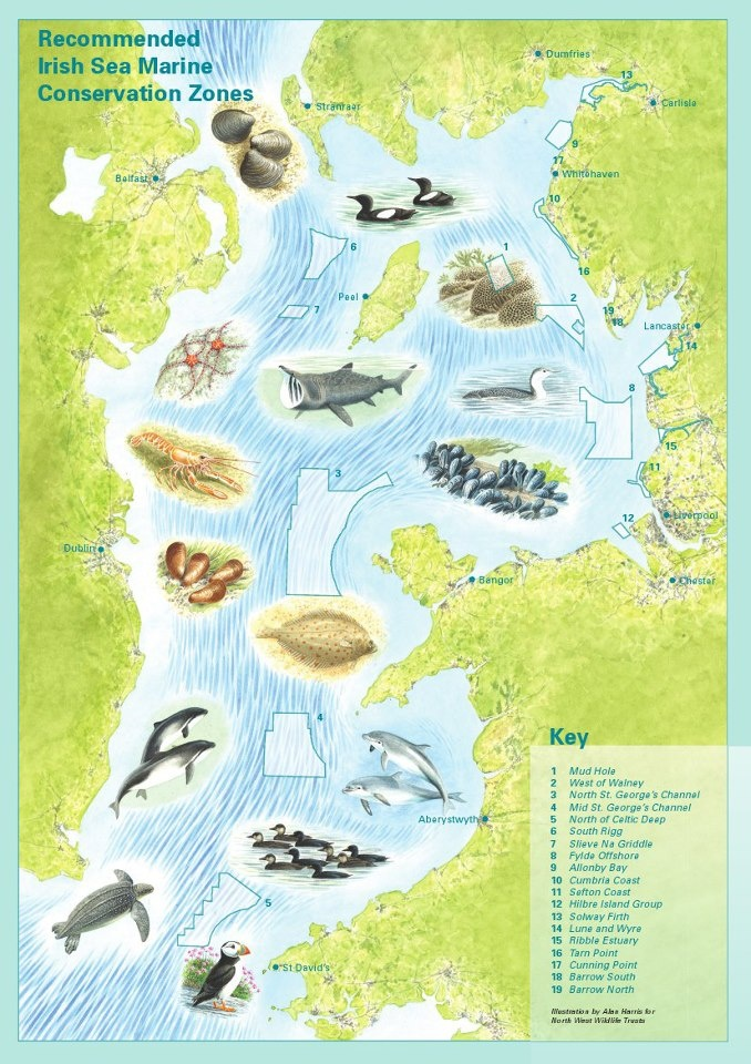 Recommended Irish Sea Conservation Areas