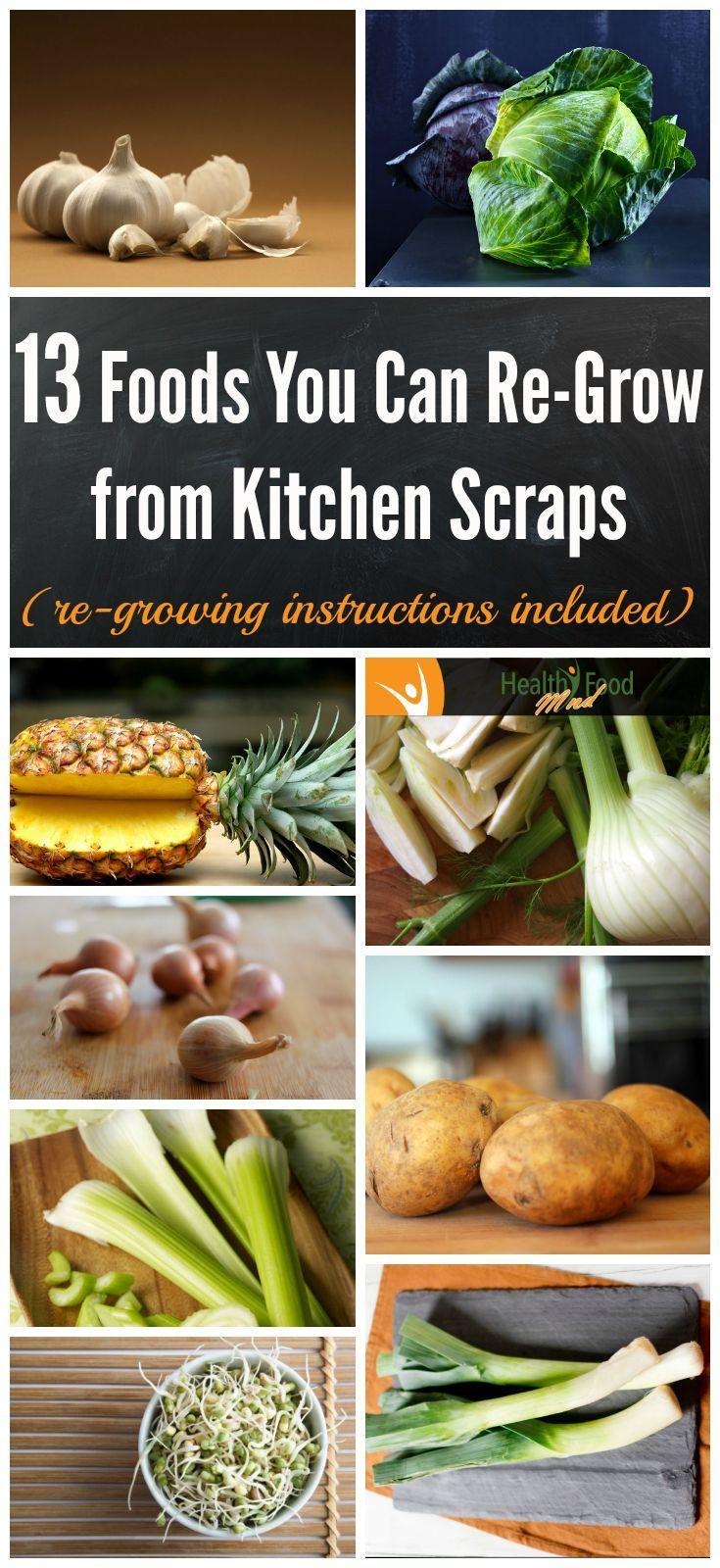 Kitchen Scrap Gardening 17 Best Images About Regrow Foods On Pinterest Gardens