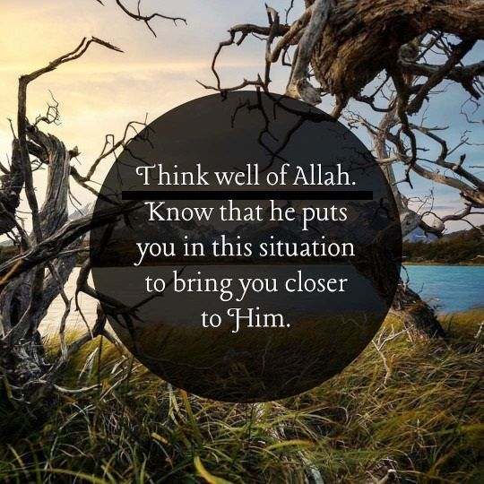 Think well of Allah