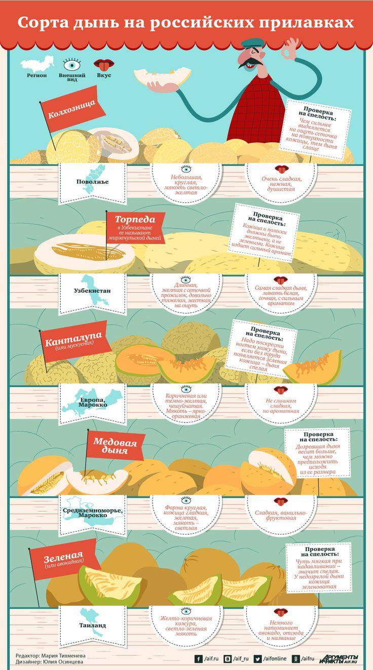 Какие дыни нам продают и как определить их спелость | Продукты и напитки | Кухня | Аргументы и Факты