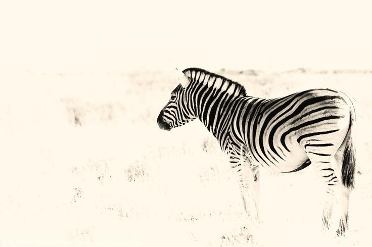 Africa...www.Karens.co.za