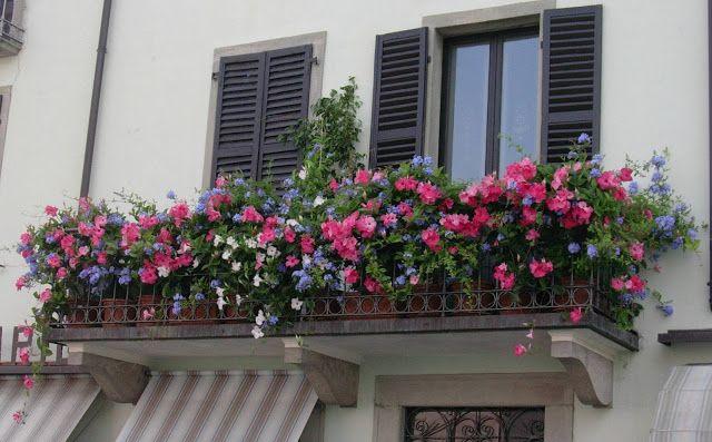Un balcone a Bardi (Parma) - Italy http://unpiccologiardino.blogspot.it/2013/09/balconi-fioriti.html