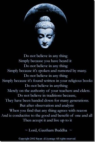 Meditation and Buddhism has changed my life, no lie.
