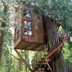 Terrain Where Weve Been: The Treehouse #shopterrain