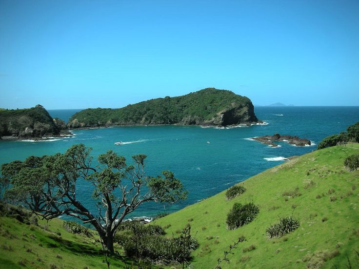 Tutukaka (Northland, New Zealand)