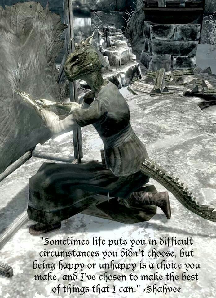 Such a great outlook on life. Especially for an Argonian. Cause, as well all know, they are a step above the dark elves in terms of Skyrim racism.