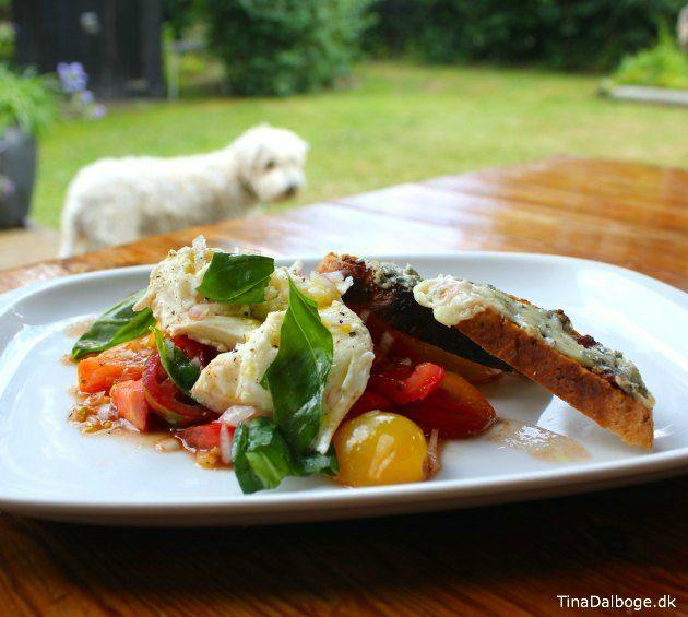 Tomatsalat til forret med mozzarella, rødløg og ristet brød med danablue og rød pesto