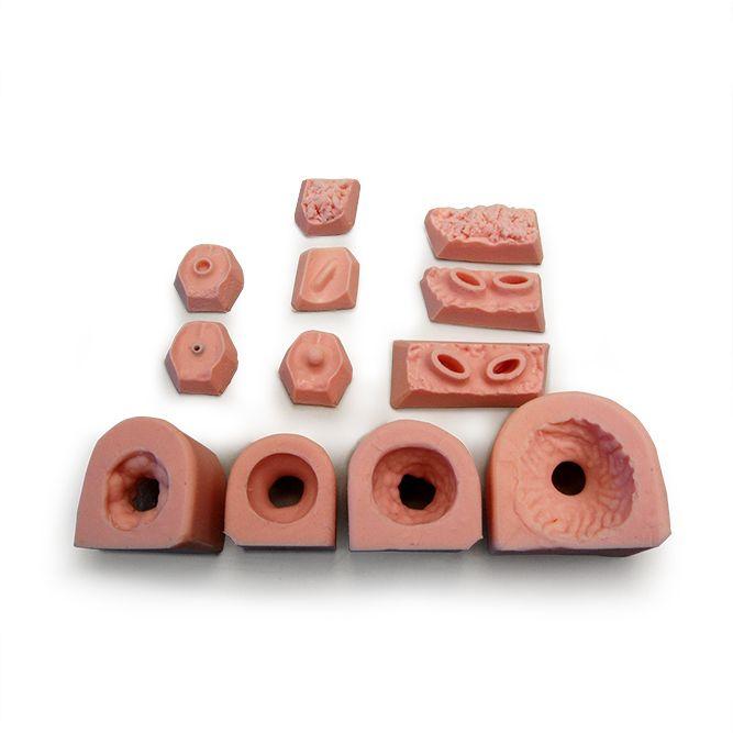 ems trainer forum ausbildung hamburg altona.jpg