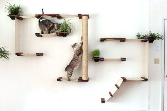Inspiratie voor een katvriendelijk interieur - Makeover.nl