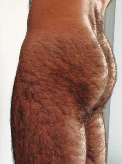 Mens Hairy Butt 97