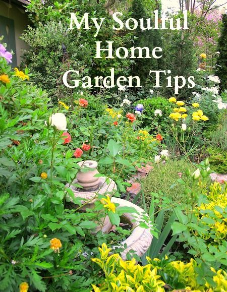 Garden Tour Fifty Shades Of Green: 17 Best Images About GARDEN Home Garden Tours & Ideas On