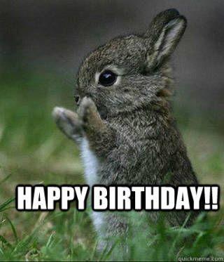 555088c0e39d523be4f2d27e1e6c35ef funny happy birthday meme funny happy birthdays the 25 best happy birthday bunny ideas on pinterest happy,Happy Birthday Easter Meme