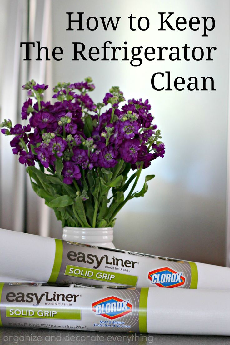 Best 25 refrigerator cleaning ideas on pinterest diy for How to keep kitchen clean and organized