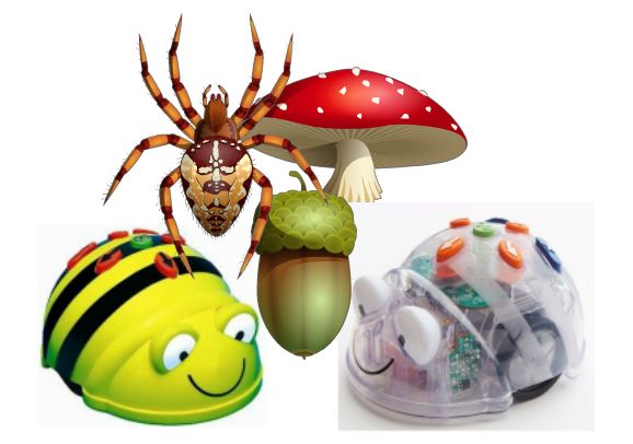 Werk met de Bee Bot met als thema herfst Leeftijd: 4 – 12 jaar Prijs Bee Bot: € 79,95 Koop de Bee Bot Prijs Transparante mat: vanaf € 24,95 Koop de mat De Bee Bot De Bee Bot is een programmeerbare robot. Wanneer je meer over de werking van de Bee Bot wilt lezen kun …
