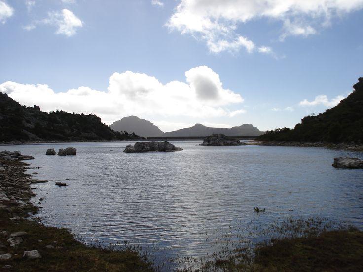 De Villiers Dam in Cecilia Forest.