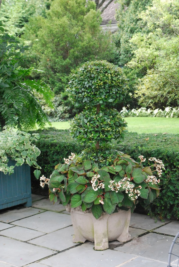 356 best planters urns and window box beauty images on pinterest beautiful gardens. Black Bedroom Furniture Sets. Home Design Ideas