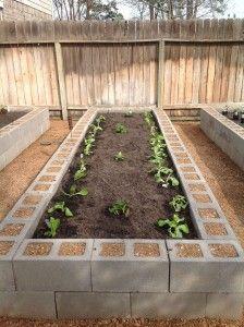Herb Garden Layout Design Planter Boxes