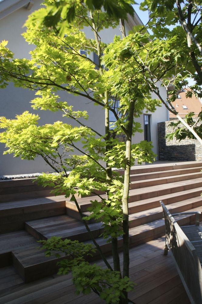 Nice Japanische Garten Garden