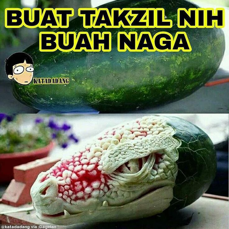 Yang tadi buka pyasa pake buah ini angkat tangan..!! 😊 Kiriman dari @katadadang via @dagelan_aplikasi #dagelan #memeinajah