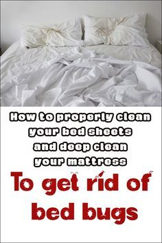 How to properly clean your bed sheets and deep clean your mattress to ged rid of bed bugs
