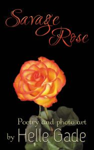 My poetry collection Savage Rose is on sale at 99 cents  #poetry