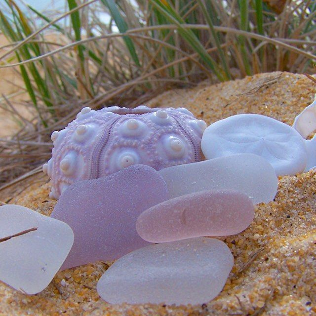 Finding purple sea glass most likely means you have found historic glass from the 1800s to the early 1900s. All about the manganese used to make clear glass back then and how it reacts with sunlight...giving it a beautiful purple hue over many years
