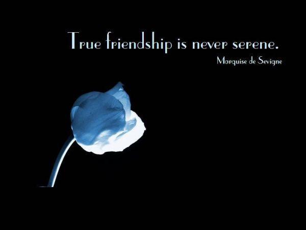 True Friendship Is Never Serene Friendship Quotes Pinterest Interesting Short Quote About Friendship