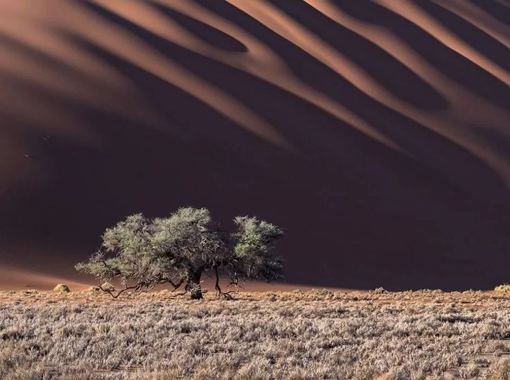 15 Unique Photos from National Geographic That Show Amazing Natural Wonders
