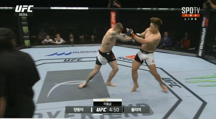 UFC 서울 양동이 콜리어 핵폭탄급 파운딩승리