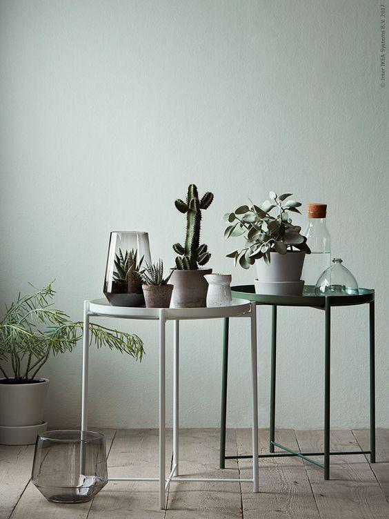 159 best STHY - Groen in huis images on Pinterest Green, Plants - küchen regale ikea
