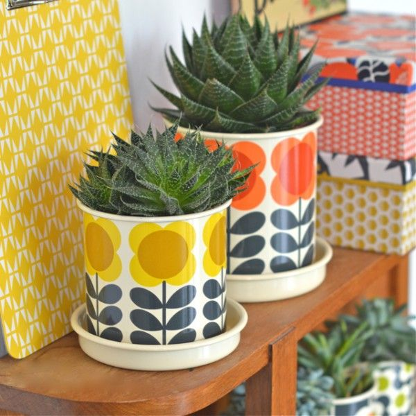 cache-pot moyen big Spot jaune Orla Kiely - deco-graphic.com                                                                                                                                                                                 More