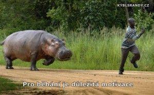 Pro běhání je důležitá motivace