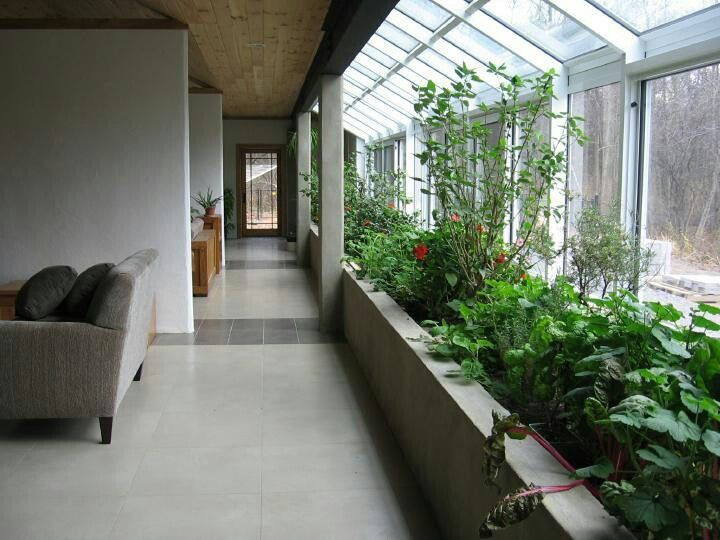 Indoor garden literally brings the outside into this home!