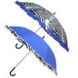 Mooie Blauwe paraplu met zebraprint-rand, gelukkig regent 't vaak in Nederland, dus je kunt hem veel gebruiken!
