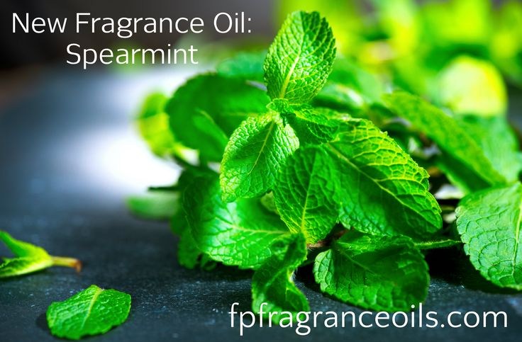 Welcome to FP Fragrance Oils - Strong Fragrances at a Great Price!