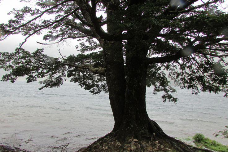 Lago atravesado, Coyhaique, Chile
