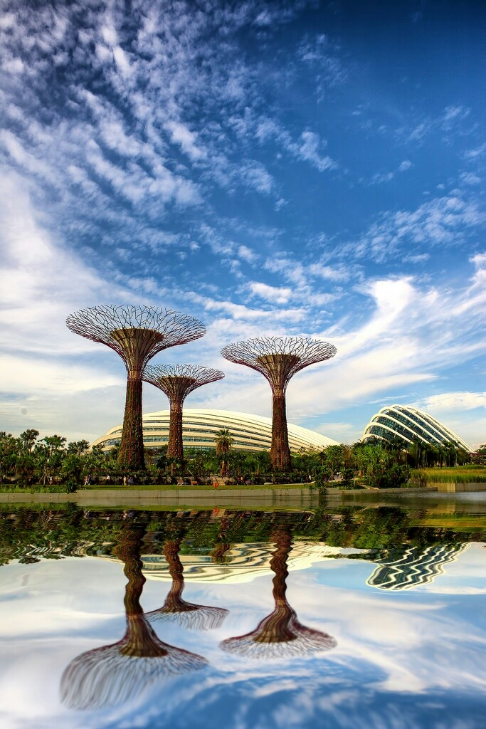 86 best Gardens by the Bay ~ Singapore images on Pinterest | Gardens ...
