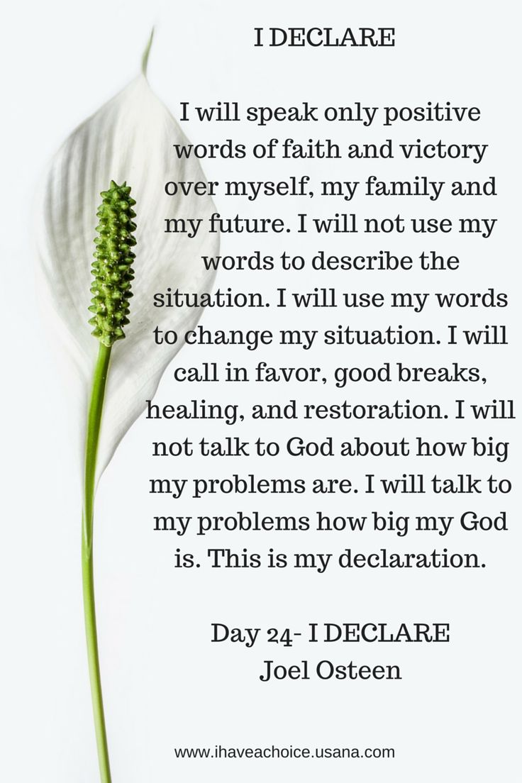 Day 24 I Declare by Joel Osteen. I will speak only positive words of faith....I will tap to my problems how big my God is.