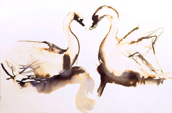 swans in ink and bleach: will try combining with gouache