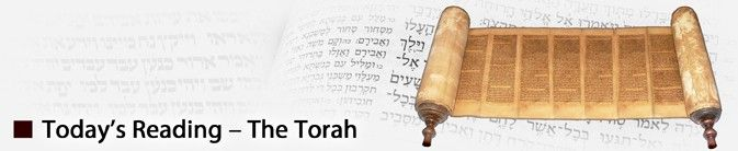 "Ki Tavo | כי תבוא | ""When You Come In"" Torah: Deuteronomy 26:1 - 29:9(8)  Prophets: Isaiah 60:1-22 Brit Hadasha: Matthew 13:1-23; Luke 21:1-4, 23:26-56; Acts 7:30-53, 28:17-31; Romans 11:1-24"