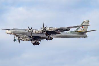 RF-94179 - Russia - Air Force Tupolev Tu-95MS photo (68 views)