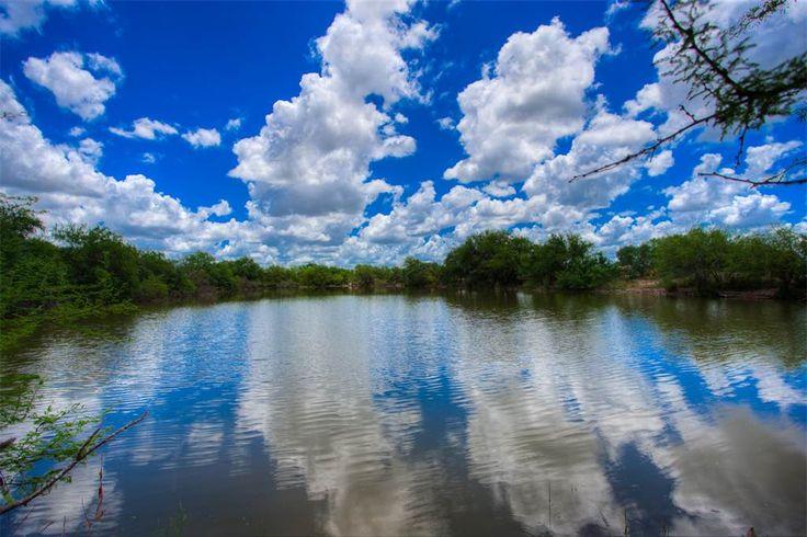 Las Moritas Ranch | 3845 Acres Wormser Rd | Laredo, Texas