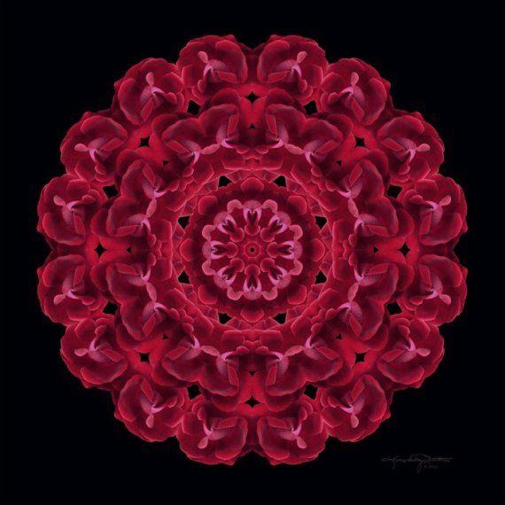 Red Rose Flower Mandala Art Spiritual Heart Connection - Consejo de las Rosas