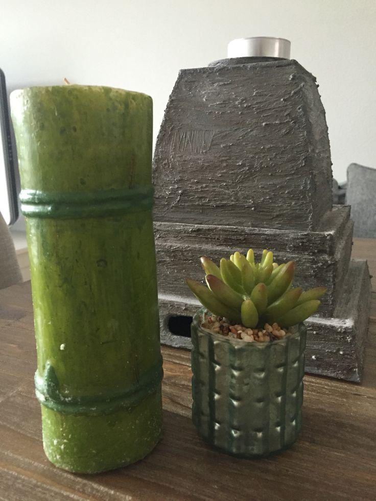 Bamboe kaars en nep cactus in potje
