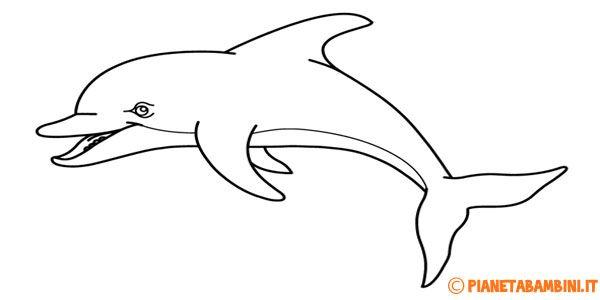 30 disegni di delfini da colorare