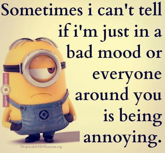 Funniest Quotes About Being Annoying: 68 Best Images About Minions On Pinterest