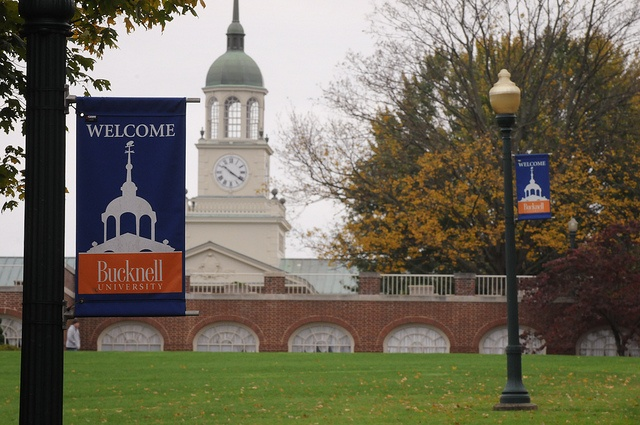 Bucknell University Acceptance Rate >> 41 best Bucknell images on Pinterest