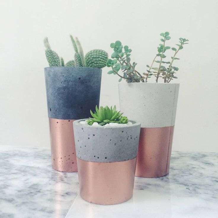 PIN 2: These copper dipped cement mini pots are a great way to add a little bit of colour to what would usually be a plain cement pot. The greenery works well with the rose gold/copper colouring at the bottom of the pot, and acts as a visually pleasing ornament.